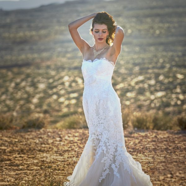 Bridal portrait in Big Bend National park Arizona with a white dress and arid background. Wedding photo has bride posed with hands running through hair.