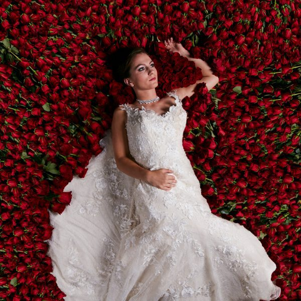Bridal portrait on a bed of roses at a Houston wedding venue. Bride is laying on red roses in a white bridal gown surrounded by roses